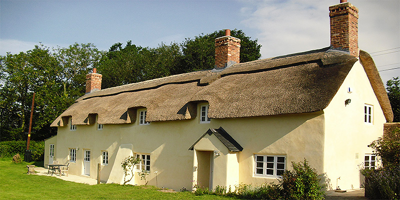 Preservation with Lime Render